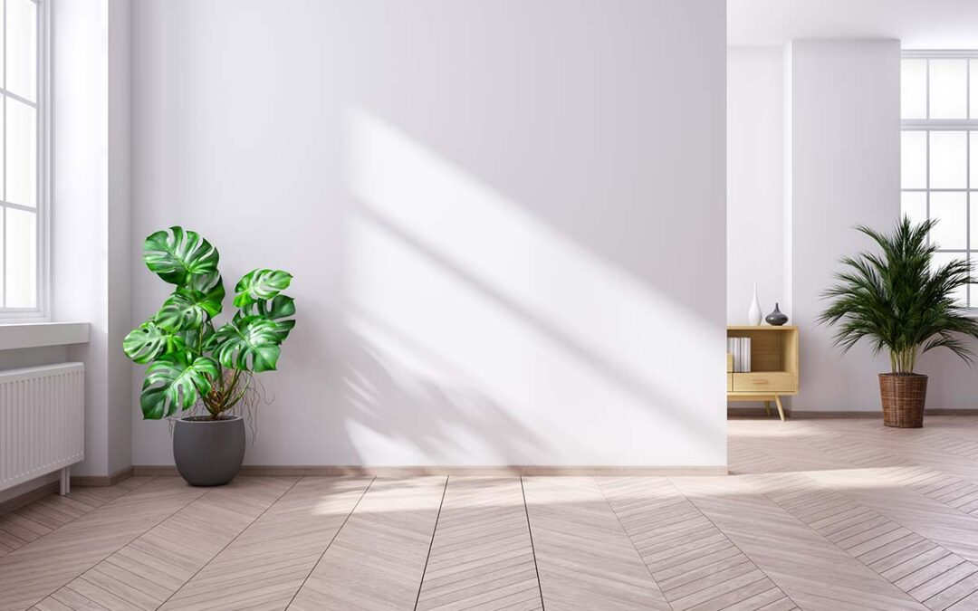 aprovechar energia solar en el hogar